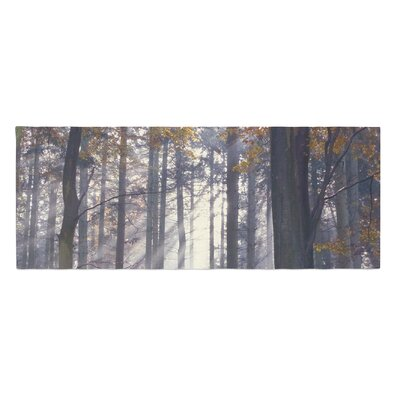 Alison Coxon Autumn Sunbeams Trees Photography Bed Runner