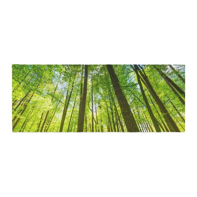 Susan Sanders Tree Sky Photography Bed Runner