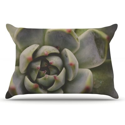 Debbra Obertanec Desert Succulent Pillow Case