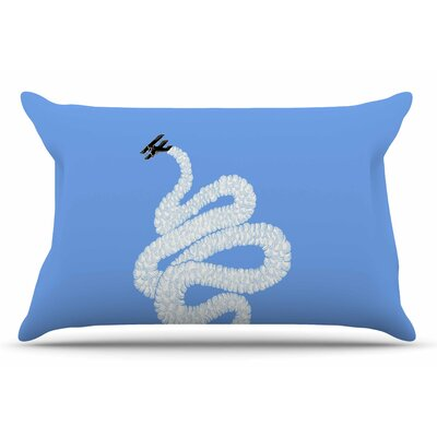BarmalisiRTB Aircraft Smoke Pillow Case