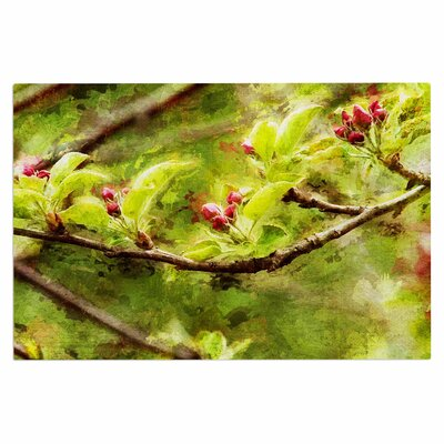 Ginkelmier Painted Apple Blossom Branch Photography Doormat