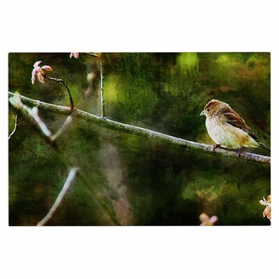 Ginkelmier Painted Songbird Nature Doormat