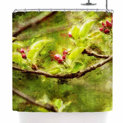 Ginkelmier Painted Apple Blossom Branch Photography Shower Curtain