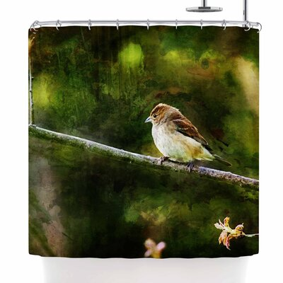 Ginkelmier Painted Songbird Shower Curtain