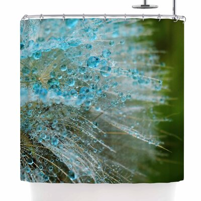 Ginkelmier Rain Dandelion Photography Shower Curtain
