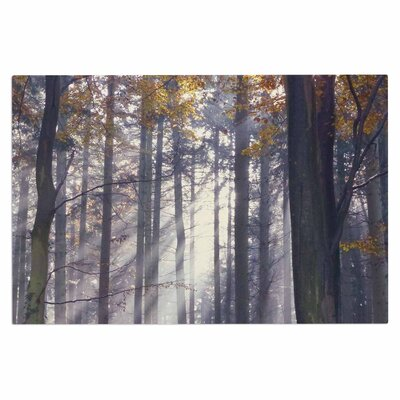 Alison Coxon Autumn Sunbeams Trees Photography Doormat