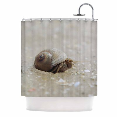 Angie Turner Hermit Crab Photography Shower Curtain