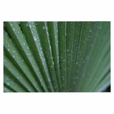 Cyndi Steen Palm Frond Nature Doormat
