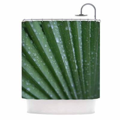 Cyndi Steen Palm Frond Shower Curtain