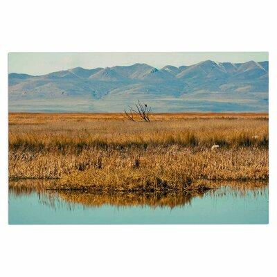 Reflective Landscape Doormat