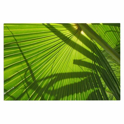 Palm Shadows Doormat