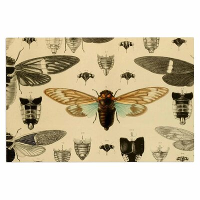 Vintage Cicada Bugs Decorative Doormat