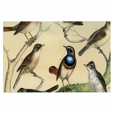 Vintage Birds Doormat