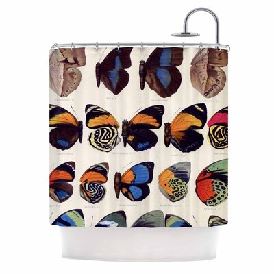 Vintage Wings Nature Shower Curtain
