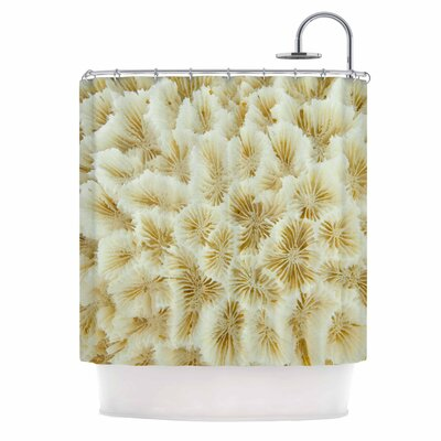Ivory White Ocean Beach Coral Photography Shower Curtain