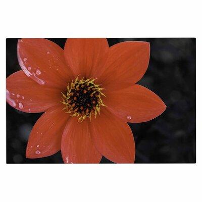 Wet Red Flower Petals Doormat
