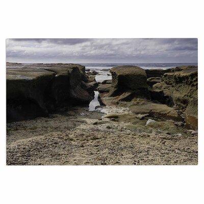 Stones Leading to Ocean Doormat