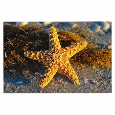Starfish Doormat
