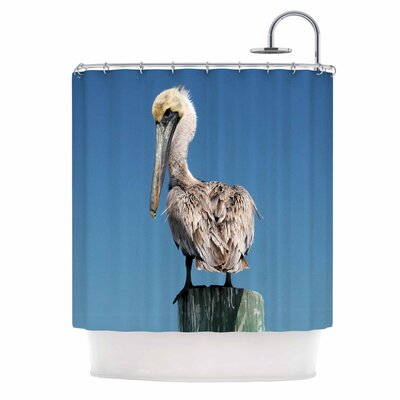 'Pelican' Photography Shower Curtain