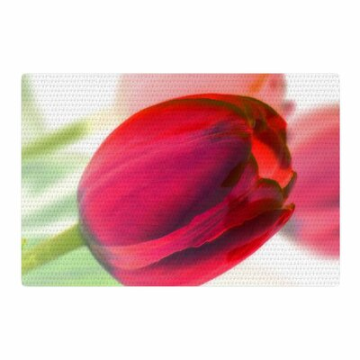 Alison Coxon Tulips Red/White Area Rug Rug Size: 4 x 6
