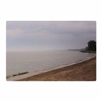 Angie Turner Along the Coast Blue/Gray Area Rug Rug Size: 2 x 3
