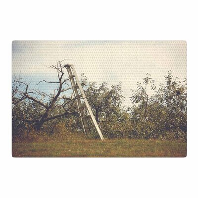 Angie Turner Apple Picking Photography Green Area Rug Rug Size: 4 x 6