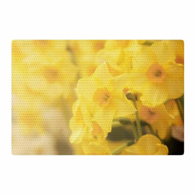 Angie Turner Dreamy Daffodils Yellow/Nature Area Rug Rug Size: 2 x 3