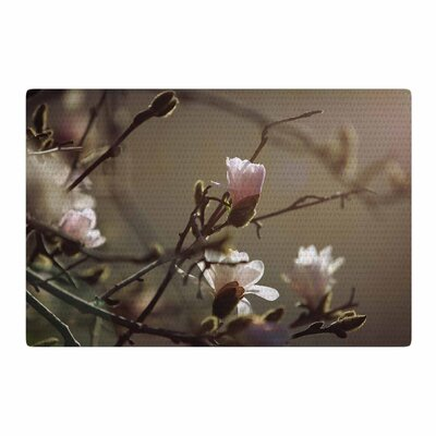 Angie Turner Magnolia Blooms Pink/White Area Rug Rug Size: 2 x 3