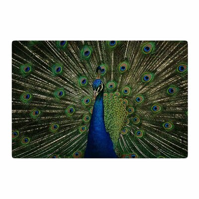 Angie Turner Proud Peacock Animals Blue Area Rug Rug Size: 4 x 6