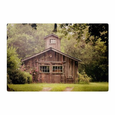 Angie Turner Shabby Elegance Barn Nature Photography Area Rug Rug Size: 4 x 6