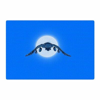 BarmalisiRTB Battle Owl Blue/White Area Rug Rug Size: 2 x 3