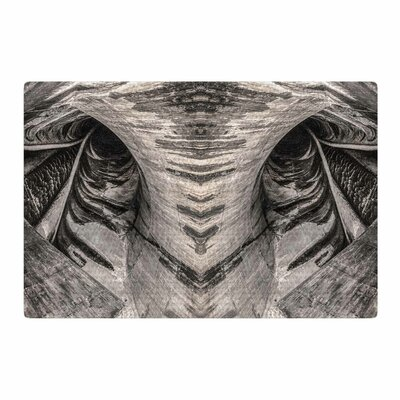 Bruce Stanfield Dam Reticulation the Void Black/White Area Rug Rug Size: 2 x 3