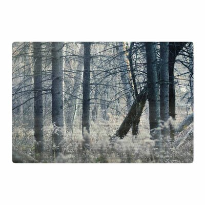 Chelsea Victoria Out of the Woods Photography Nature Area Rug Rug Size: 4 x 6