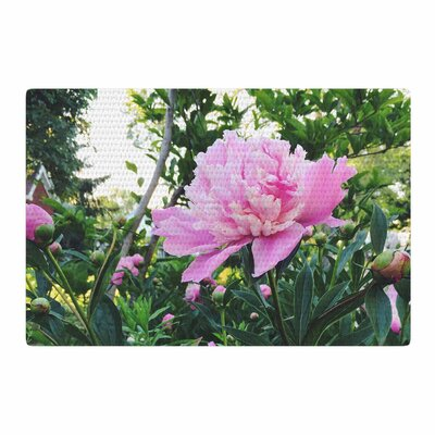 Chelsea Victoria Pink Peonies Floral Green Area Rug Rug Size: 2 x 3
