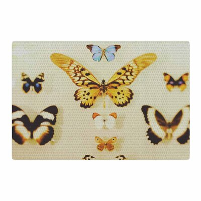 Chelsea Victoria the Butterfly Collection Photography Blue Area Rug Rug Size: 2 x 3