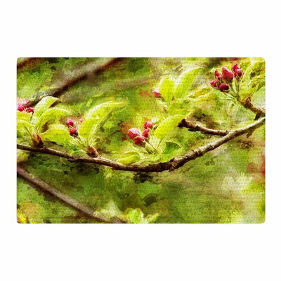 Ginkelmier Painted Apple Blossom Branch Photography Green Area Rug Rug Size: 2 x 3