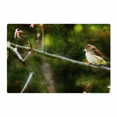 Ginkelmier Painted Songbird Green/Nature Area Rug Rug Size: 2 x 3
