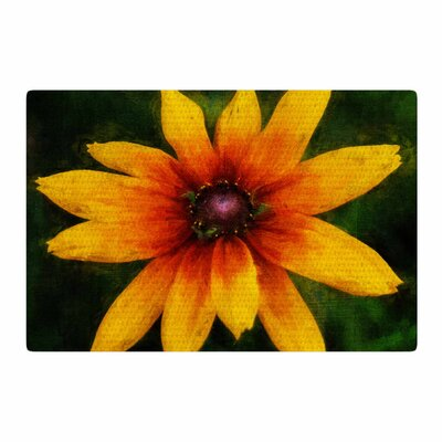 Ginkelmier Wildflower In Sun Photography Yellow Area Rug Rug Size: 2 x 3