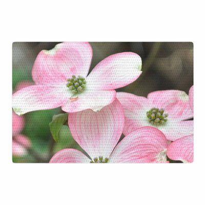 Jennifer Rizzo Spring Flowering Dogwood Pink/Green Area Rug Rug Size: 4 x 6