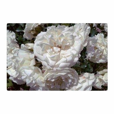 Julia Grifol Flores Blancas White/Nature Area Rug Rug Size: 2 x 3