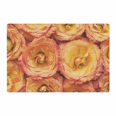 Kristi Jackson Bed of Roses Coral/Pink Area Rug Rug Size: 4 x 6