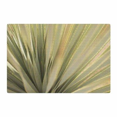 Kristi Jackson Cactus Green/Yellow Area Rug Rug Size: 2 x 3