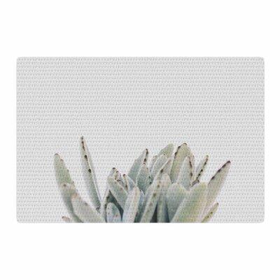 Kristi Jackson Succulent 3 Photography Green Area Rug Rug Size: 2 x 3