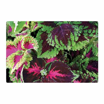 Louise Machado Forest Green/Magenta Area Rug Rug Size: 4 x 6