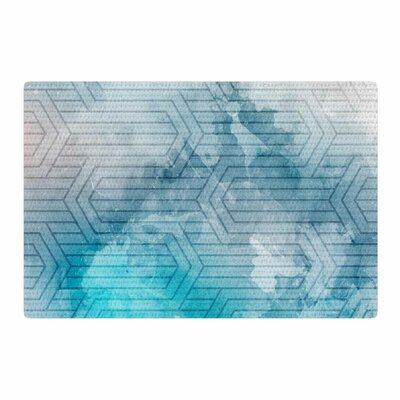 Matt Eklund Frost Labyrinth Blue/White Area Rug Rug Size: 4 x 6