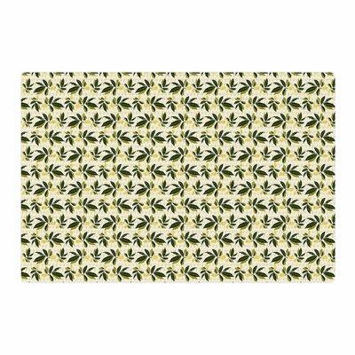 Mayacoa Studio Pine Cone Yellow/Green Area Rug Rug Size: 4 x 6
