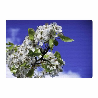 Nick Nareshni Cherry Blossoms and Sky Aqua/White Area Rug Rug Size: 2 x 3