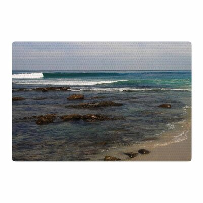 Nick Nareshni Clear Water Beach Coastal Teal Area Rug Rug Size: 4 x 6