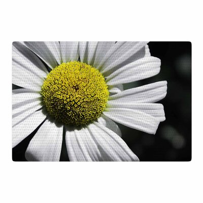 Nick Nareshni Open Daisy White/Blue Area Rug Rug Size: 4 x 6