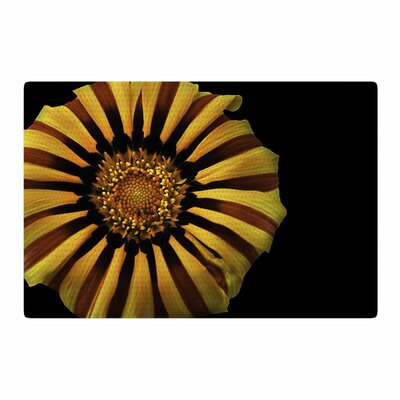 Nick Nareshni Flower Floral Photography Red/Yellow Area Rug Rug Size: 4 x 6